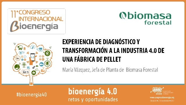 2 BIOMASA FORESTAL • Empresa gallega situada en As Pontes, dedicada a la fabricación y comercialización de pélets. • Capac...