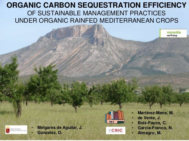 ORGANIC CARBON SEQUESTRATION EFFICIENCYOF SUSTAINABLE MANAGEMENT PRACTICESUNDER ORGANIC RAINFED MEDITERRANEAN CROPS• Martí...