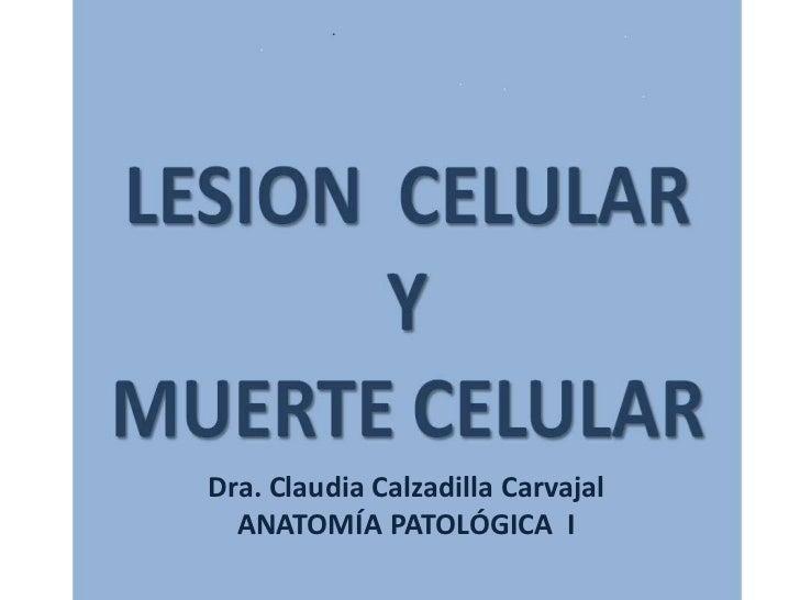 Dra. Claudia Calzadilla Carvajal  ANATOMÍA PATOLÓGICA I