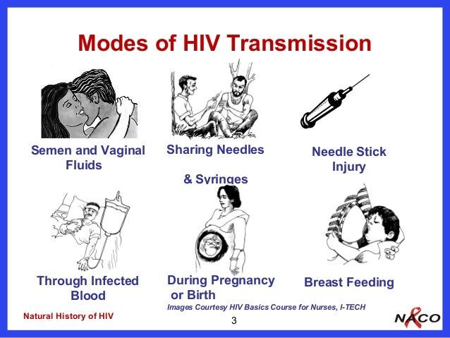 Aids Oral Transmission 96
