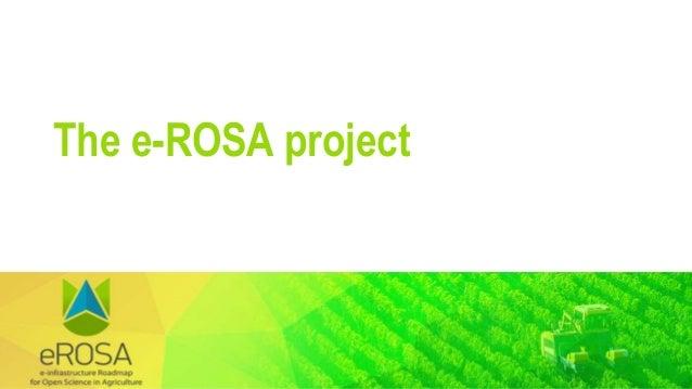 The e-ROSA project