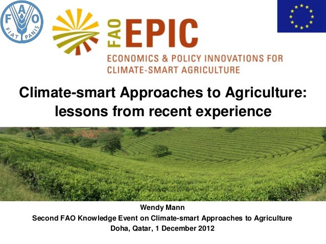 Climate-smart Approaches to Agriculture:     lessons from recent experience                            Wendy Mann Second F...