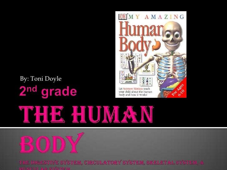 2nd gradeThe Human BodyThe Digestive System, Circulatory System, Skeletal System, & Muscular System<br />By: Toni Doyle<br />