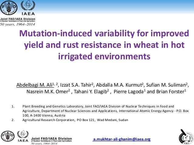 Mutation-induced variability for improved yield and rust resistance in wheat in hot irrigated environments Abdelbagi M. Al...