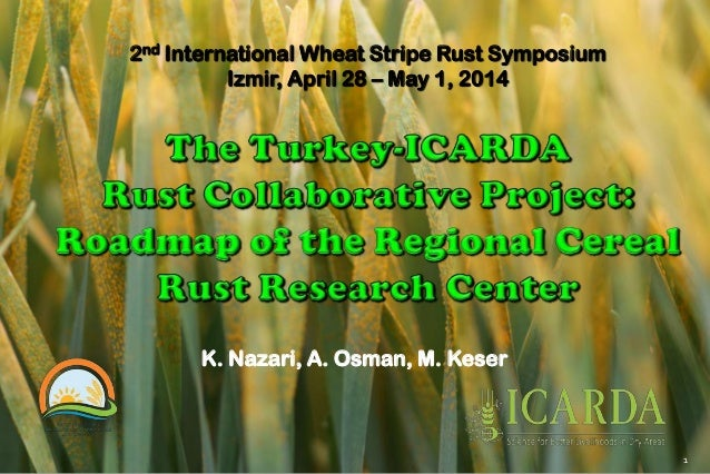 2nd International Wheat Stripe Rust Symposium Izmir, April 28 – May 1, 2014 K. Nazari, A. Osman, M. Keser 1