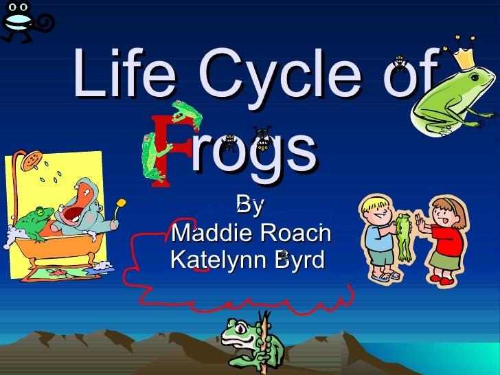 Life Cycle of rogs By Maddie Roach Katelynn Byrd
