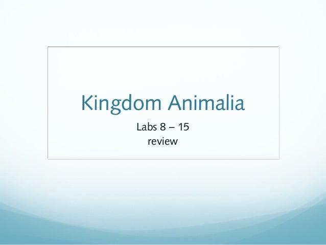 Kingdom Animalia Labs 8 – 15 review