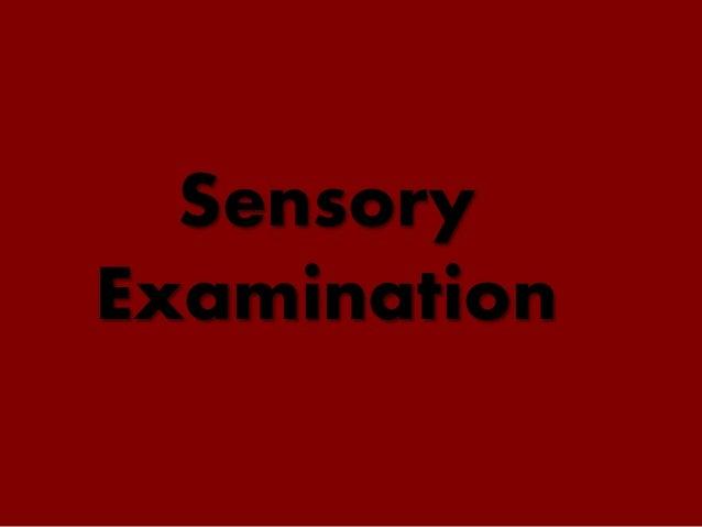 Sensory Examination