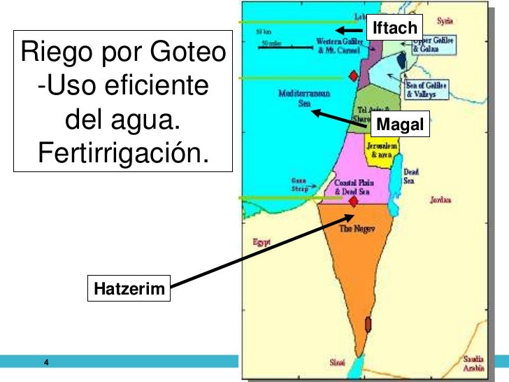"""""""NUEVAS TENDENCIAS Y SOLUCIONES EN EL RIEGO POR GOTEO"""" Slide 3"""
