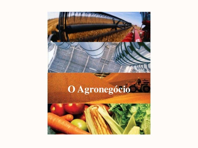 O Agronegócio