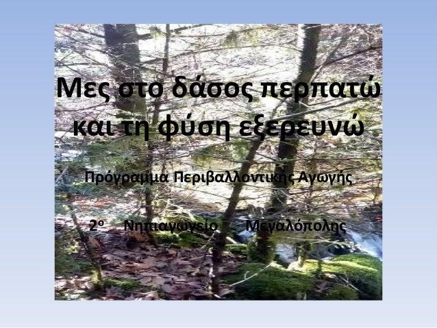 Μες στο δάσος περπατώ και τη φύση εξερευνώ Πρόγραμμα Περιβαλλοντικής Αγωγής 2ο Νηπιαγωγείο Μεγαλόπολης