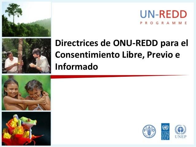 Directrices de ONU-REDD para elConsentimiento Libre, Previo eInformado