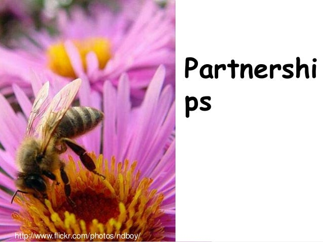 Swinburne Partnershi ps http://www.flickr.com/photos/ndboy/