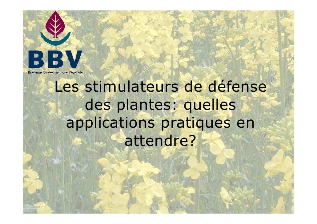 Les stimulateurs de défense     des plantes: quelles  applications pratiques en          attendre?