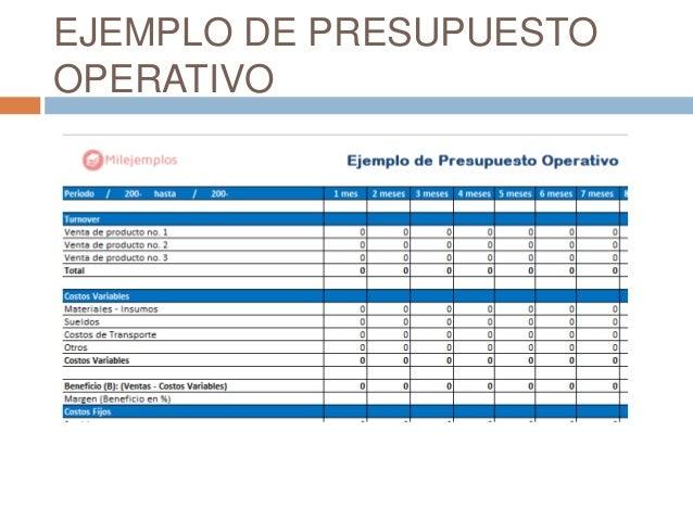 Presupuesto operativo for Presupuesto para una pileta de material