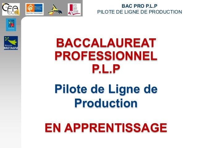 BAC PRO P.L.P PILOTE DE LIGNE DE PRODUCTION BACCALAUREAT PROFESSIONNEL P.L.P Pilote de Ligne de Production EN APPRENTISSAGE