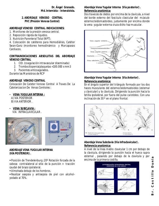 Hermosa Línea Central De La Anatomía Colocación Colección - Imágenes ...