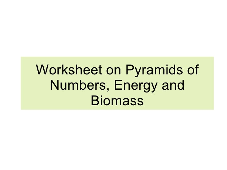 Chapter 21 Ecology Lesson 2 Pyramid of numbers biomasscarbon cycle – Ecological Pyramid Worksheet