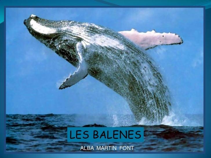 LES BALENES ALBA MARTIN FONT