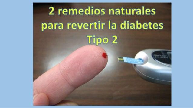 http://reviertasudiabetes.senvlog.com 2 remedios naturales para revertir la diabetes tipo 2 MEL�N AMARGO El mel�n amargo, ...