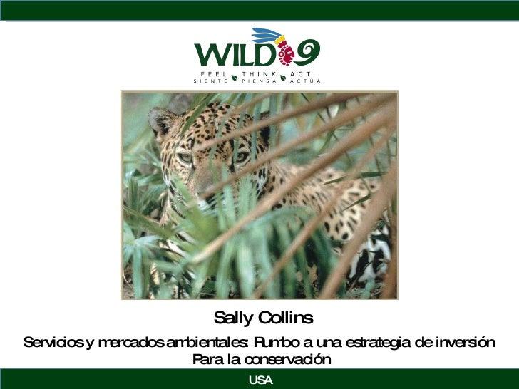 Sally Collins USA Servicios y mercados ambientales: Rumbo a una estrategia de inversi ón  Para la conservación