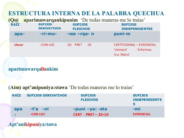 2  tema  2 quechumara  morfologia Slide 3