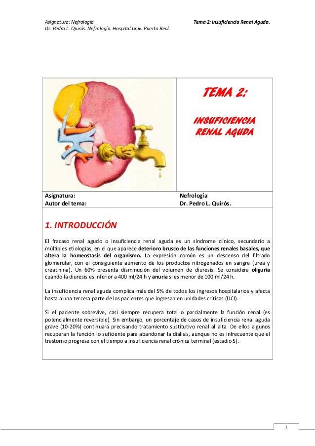 Asignatura: Nefrología                                              Tema 2: Insuficiencia Renal Aguda.Dr. Pedro L. Quirós....