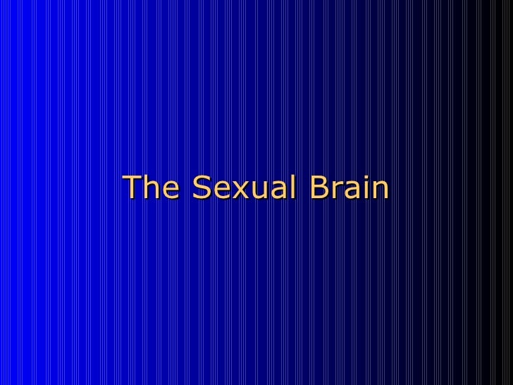 The Sexual Brain