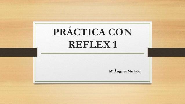PRÁCTICA CON REFLEX 1 Mª Ángeles Mellado
