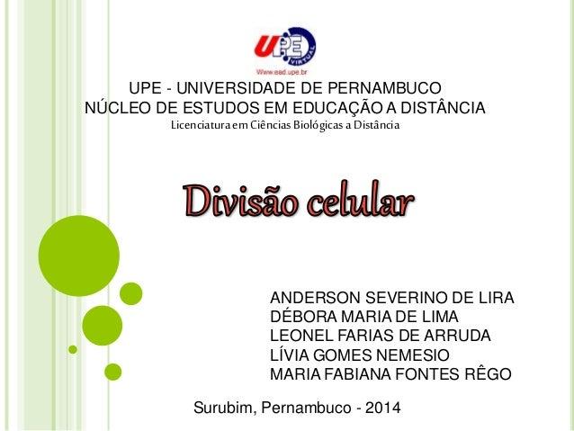 UPE - UNIVERSIDADE DE PERNAMBUCO  NÚCLEO DE ESTUDOS EM EDUCAÇÃO A DISTÂNCIA  Licenciatura em Ciências Biológicas a Distânc...