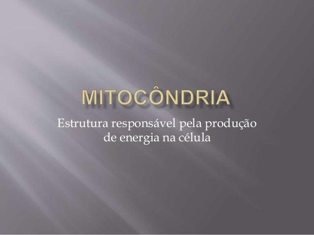 Estrutura responsável pela produção  de energia na célula