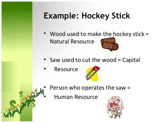 Examples Of Natural Human And Capital Resources