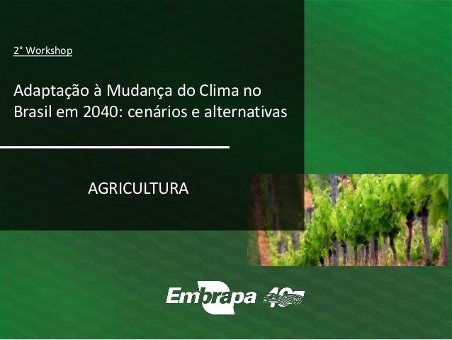 AGRICULTURA 2° Workshop Adaptação à Mudança do Clima no Brasil em 2040: cenários e alternativas
