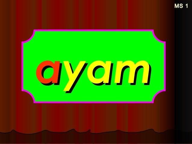 MS 1MS 1 aayamyam