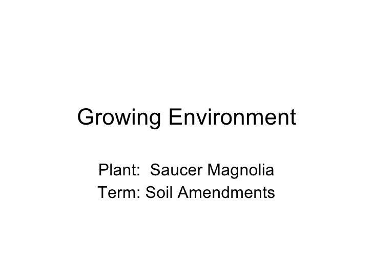 Growing Environment Plant:  Saucer Magnolia Term: Soil Amendments