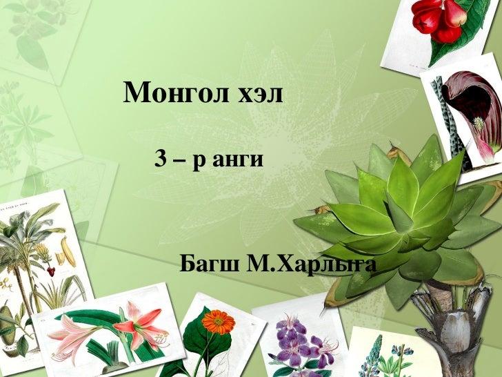 <ul><li>Монгол хэл  </li></ul><ul><li>3 – р анги