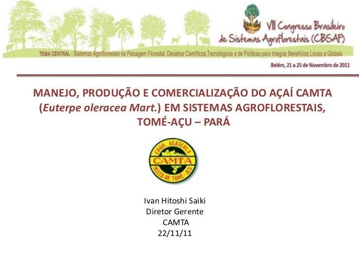 MANEJO, PRODUÇÃO E COMERCIALIZAÇÃO DO AÇAÍ CAMTA (Euterpe oleracea Mart.) EM SISTEMAS AGROFLORESTAIS,                    T...