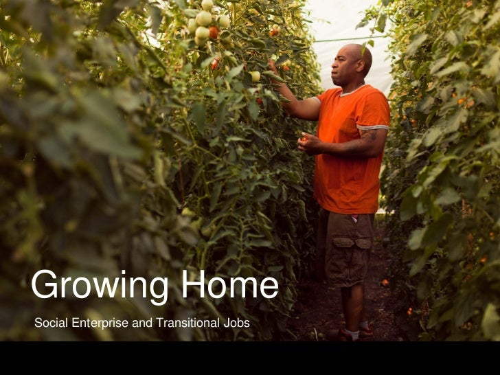 Growing HomeSocial Enterprise and Transitional Jobs