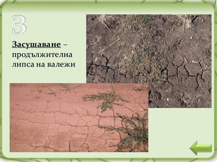 Изворите на р. Младежка                          в Странджа планинаИзвор –мястото, къдетона повърхносттана земята извираво...