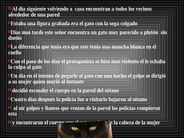 el gato negro libro pdf