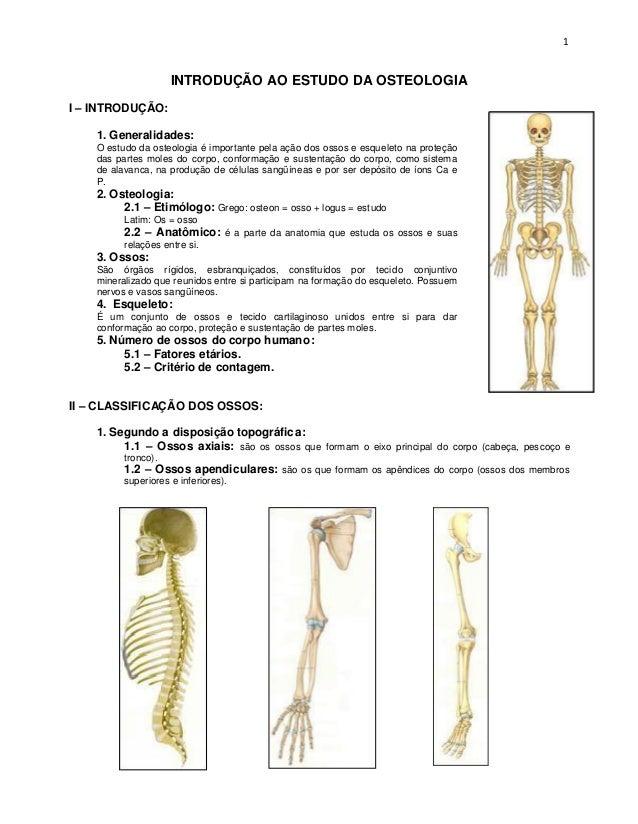 INTRODUÇÃO AO ESTUDO DA OSTEOLOGIA I – INTRODUÇÃO: 1. Generalidades: O estudo da osteologia é importante pela ação dos oss...