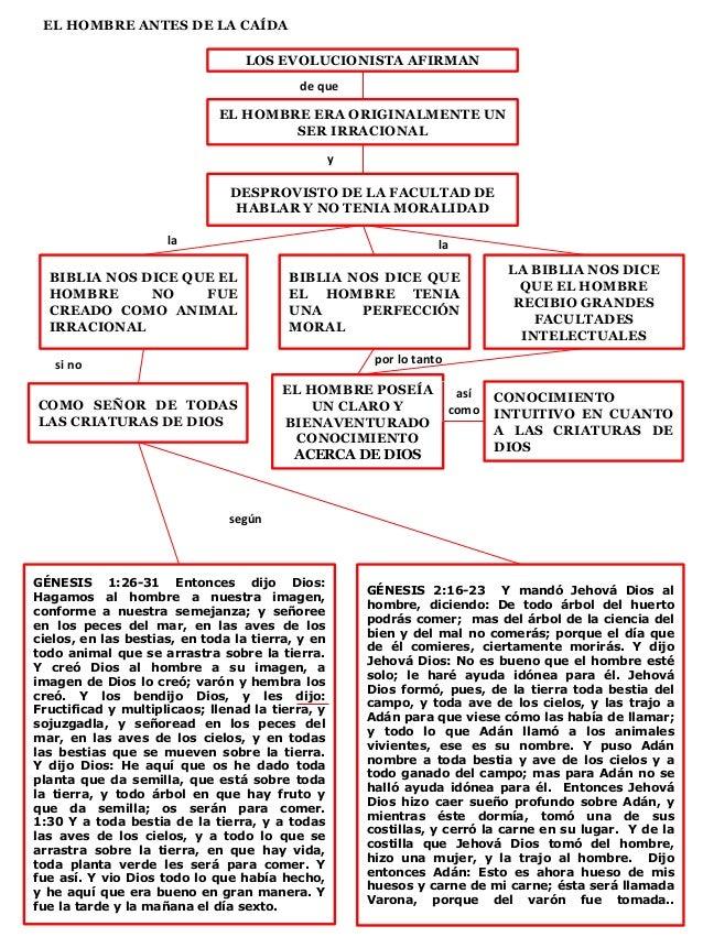 EL HOMBRE ANTES DE LA CAÍDA LOS EVOLUCIONISTA AFIRMAN de que EL HOMBRE ERA ORIGINALMENTE UN SER IRRACIONAL DESPROVISTO DE ...