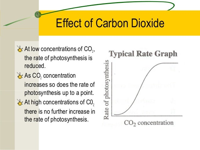 the effect of temperature and concentration