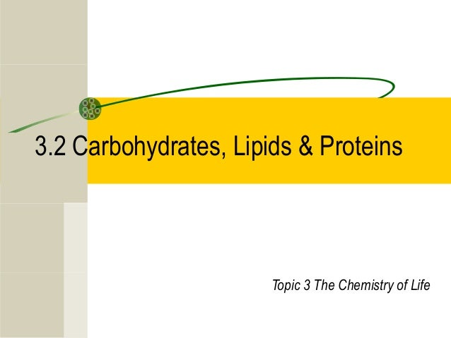3.2 Carbohydrates, Lipids & Proteins Topic 3 The Chemistry of Life