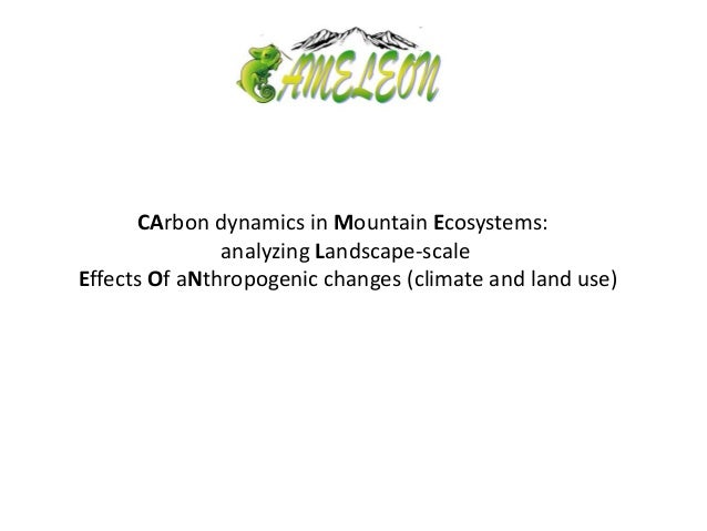 CArbon dynamics in Mountain Ecosystems: analyzing Landscape-scale Effects Of aNthropogenic changes (climate and land use)