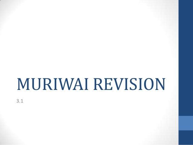 MURIWAI REVISION 3.1