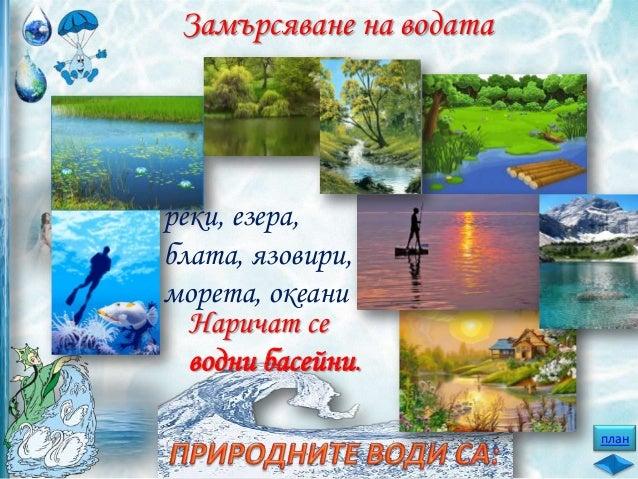 В замърсените води рибите и другите водни животни умират.