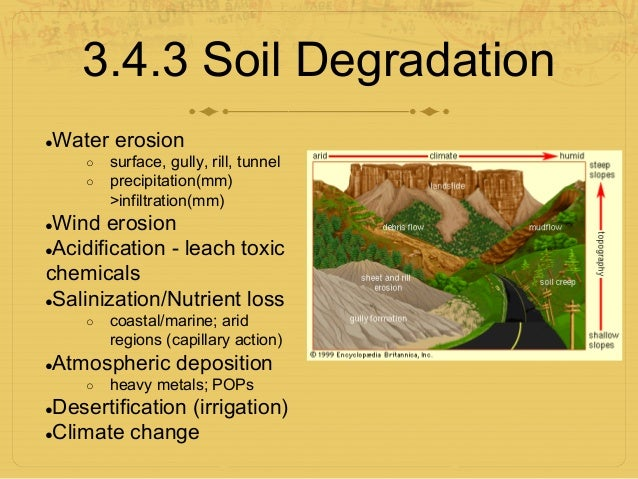 6. Food and soil. Ppt download.