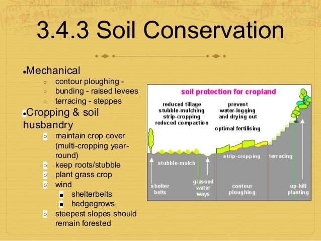 3 4 The Soil System Ppt