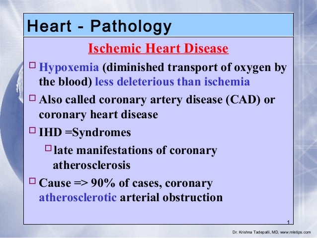 Heart - Pathology Ischemic Heart Disease  Hypoxemia (diminished transport of oxygen by the blood) less deleterious than i...